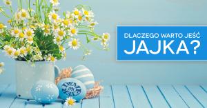 JAJKO_1200x6282